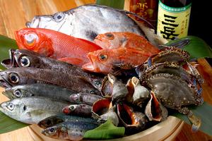 ○ 常時様々な地魚が揃ってます