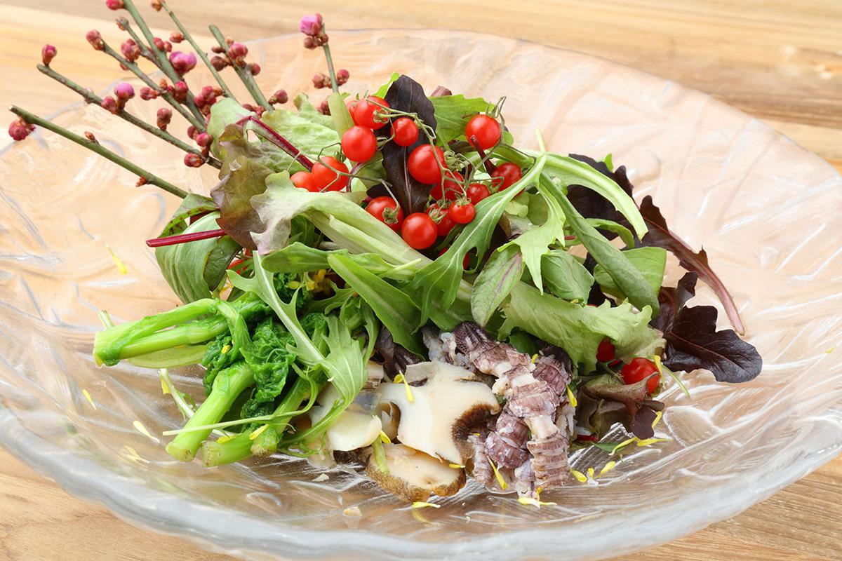 蒲郡の海の幸と妻物の海鮮サラダ