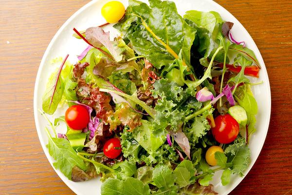 新鮮地産の野菜サラダ
