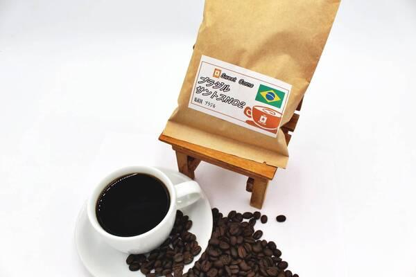 ブラジルサントスNo.2(100g)